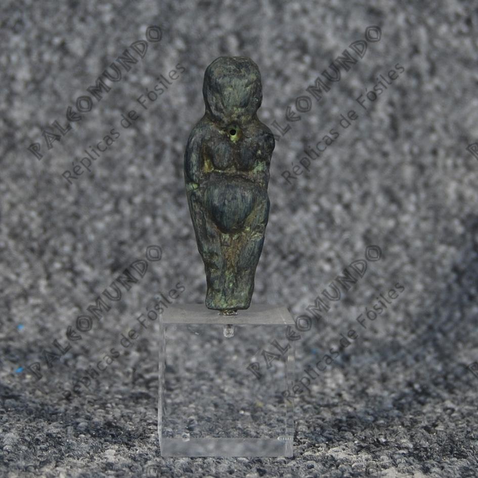 Venus perforada