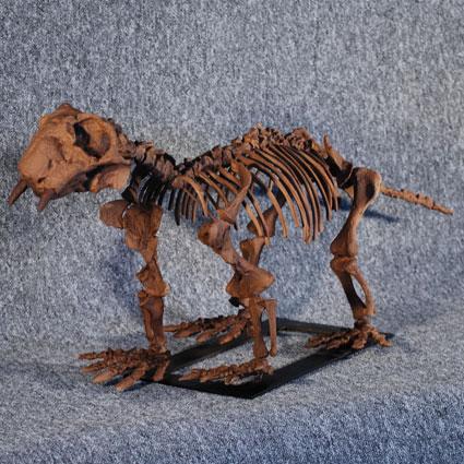Lystrosaurus georgi